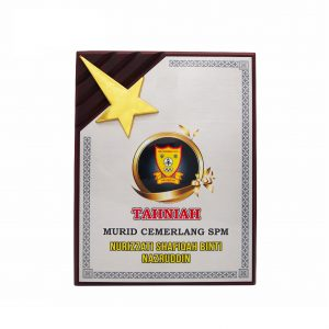 Plaques WP7087 – Wooden Plaque With Gold Star