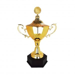 Sapiens Trophy Malaysia - Our range of Trophies - Buy Online Today